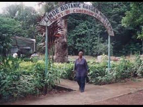 World Famous Botanical Gardens 28: Limbe Botanic Garden (Cameroon)