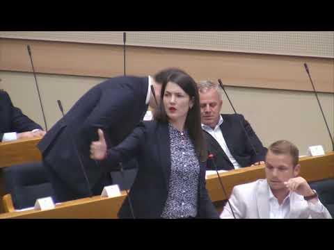 Jelena Trivic \ Dodik se ponasa kao Hrvatski clan predsjednistva (BN Televizija 2019) HD