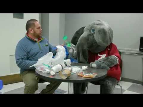 The University of Alabama: Recycling with Big Al (2017)