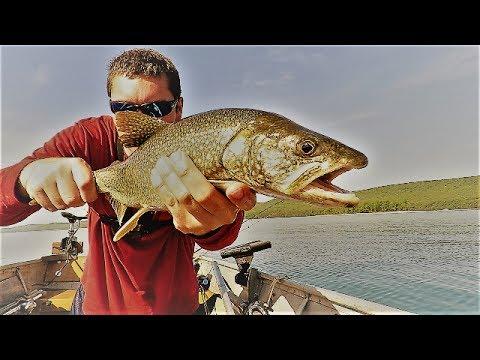 Summer Jigging for Quabbin Lake Trout!!!