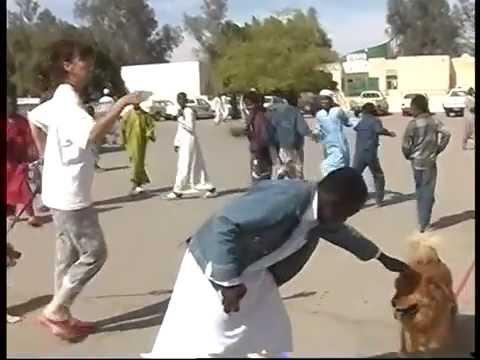 Tour in Tunisia e Libia      2° video