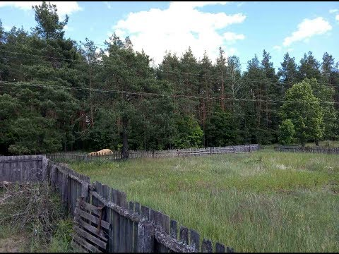 Продам дом у леса, 25 км от Чернигова. Не дорого.
