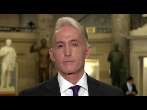 Gowdy: Dems want to drag out Russian collusion probe
