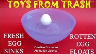 FRESH EGG SINKS, ROTTEN EGG FLOATS - ENGLISH - 15MB.wmv