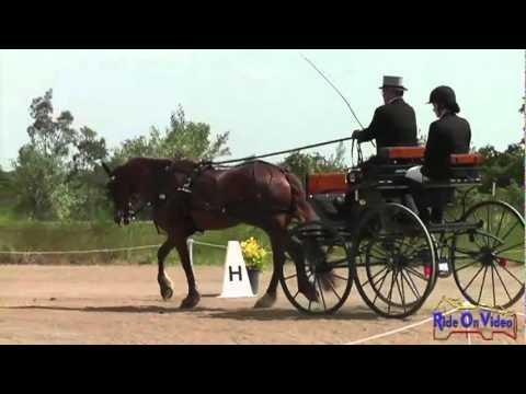 001D John Levy Intermediate Single Horse Dressage WSS Vineyard Classic CDE May 2012