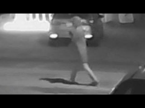 'Person of interest' in string of Florida murders on video