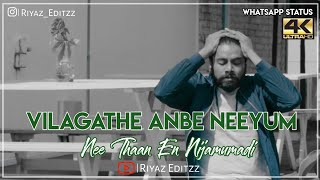 Vilagathe Anbe Neeyum || Whatsapp status video || Album song || lyrics || riyazeditzz (4k)