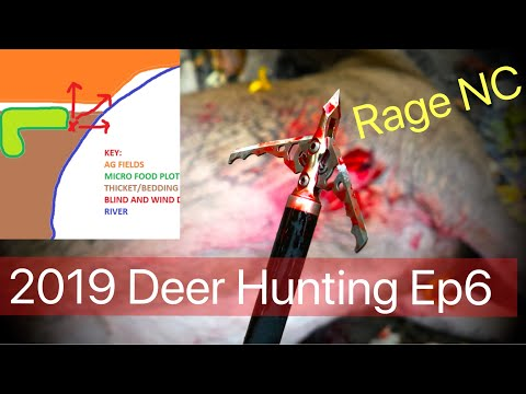 Youth Strategy Deer Hunting - Crossbow - Logpile Blinds - Rage NC