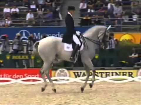 different types of horse back riding youtubedifferent types of horse back riding