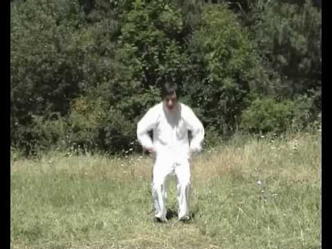 Innate (Wu Wei 无为) Qigong - 16 Taoist Healthy and Longevity Exercises, part 1