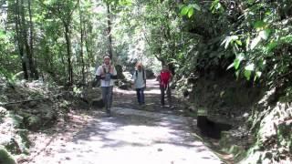 to Maxwell hill,Taiping Perak