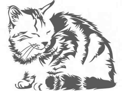Vinilos decorativos gatos youtube - Vinilos decorativos gatos ...
