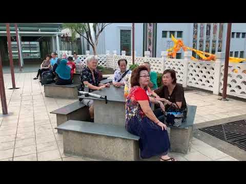 9月16号星期一牛车水天桥花园   Singapore Chinatown MRT Garden Bridges