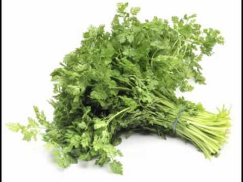 Chervil Herb Health Benefits
