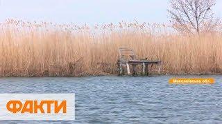 Спасение рыбы в Николаеве: инспекторы создают искусственные нерестилища и заселяют мальков