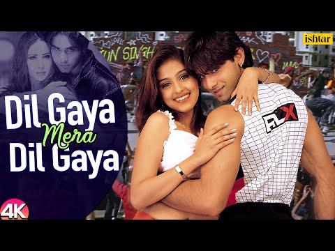 Dil Gaya Mera Dil Gaya - 4K Video   Tum Se Achcha Kaun Hai   Sonu Nigam   90's Hindi Romantic Songs