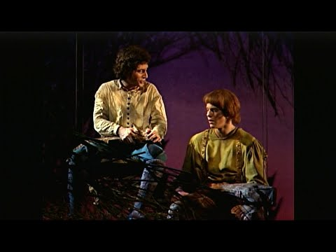 Download The Musical Moral of Into The Woods