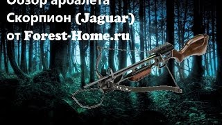Обзор арбалета Скорпион (Jaguar) от forest-home.ru