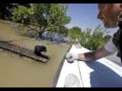 Floods affect over 1 million in Balkans, destruction 'terrifying'