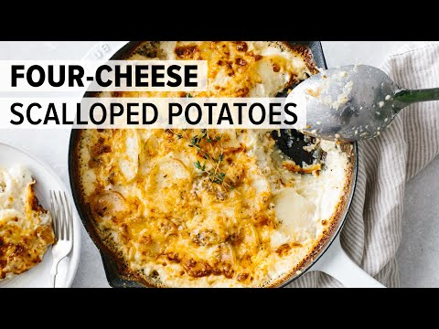 best-ever-scalloped-potatoes-|-four-cheese-blend