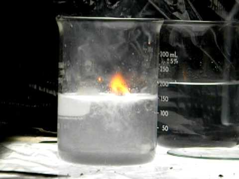 Sodium Reacts With Water