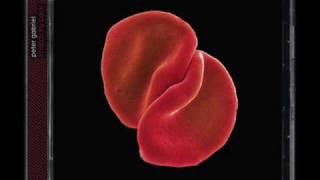 Peter Gabriel - The power of the heart.wmv