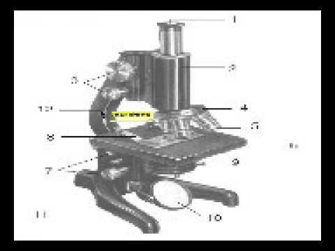 Bagian bagian mikroskop youtube