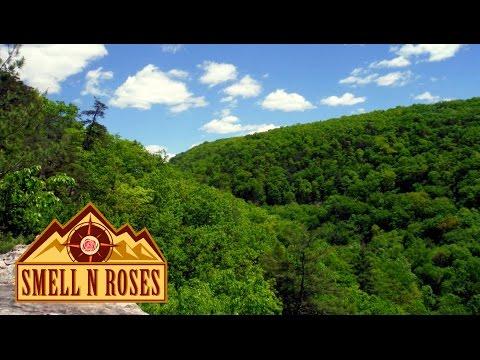 Devil's Nose at Sleepy Creek WMA, West Virginia PART 1 of 2