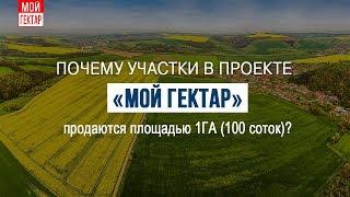 """Почему участки в проекте """"Мой гектар"""" продаются по 1 га (100 соток)?"""