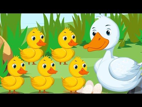 Five Little Ducks | Plus Lots More Nursery Rhymes | 35 Minutes Compilation of Best Nursery Rhymes