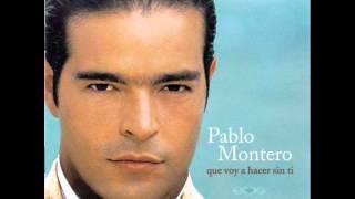 Pablo Montero  Vuelve Junto a Mi