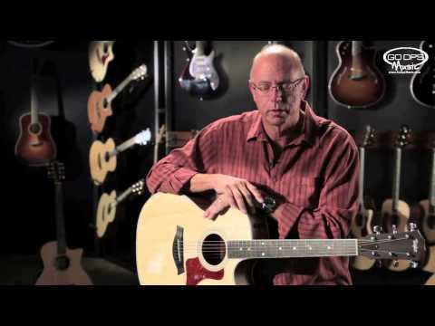 Bob Taylor of Taylor Guitars talks about the state of guitar woods across the planet