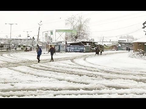 Fresh snowfall in Srinagar