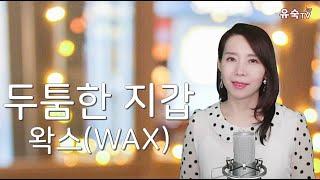 두툼한 지갑 - 왁스(WAX) Cover by 유숙