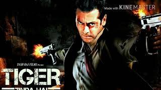Pehli Baar Mile Hain| Full Song |Tiger Zinda Hai|Salman Khan|Katrina Kaif|Arijit Singh | Lyrical