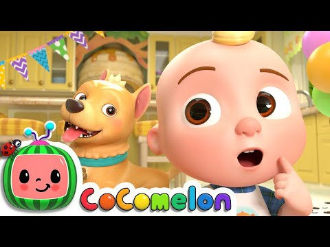 Doggy Hunt Song   CoComelon Nursery Rhymes & Kids Songs