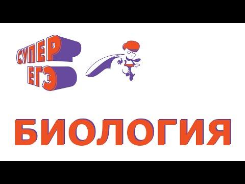 МОДУЛЬ 8 ОБМЕН ЛИПИДОВ -