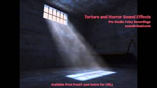 Torture and Horror Sound Effects