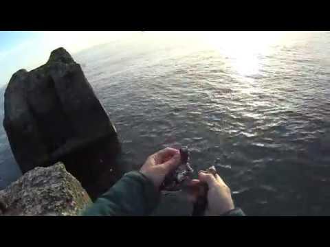 Вид из подо льда как клюет щука окунь и рак - YouTube