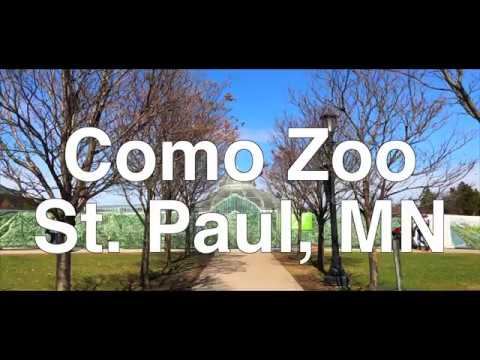 VLOG #8 Elijah Goes To Como Zoo in St Paul, Minnesota