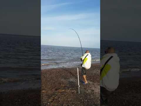 Sea fishing in great yarmouth uk