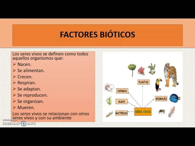 COMPONENTES DE LOS ECOSISTEMAS