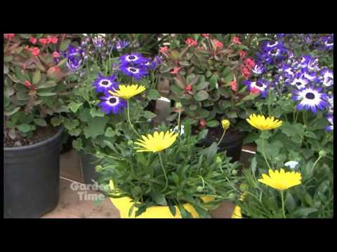 Margies Farm and Garden - GardenPalooza