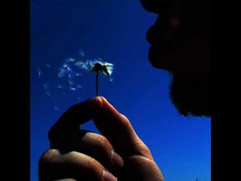 Christos Fourkis - Forest Wish (Original Mix)