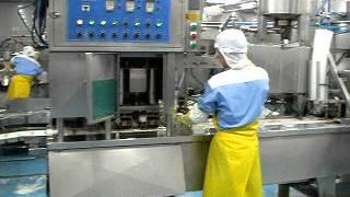 연두부포장기80~150g,300g 정남식품 (주)우성식…