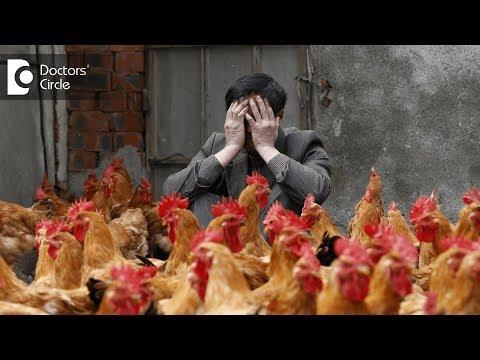 Bird flu and its effects on humans - Dr. Bindu Suresh