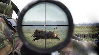 охота на кабанов ( часть 2 нарезка точных выстрелов)