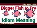 Bigger Fish to Fry Meaning | Idioms In English