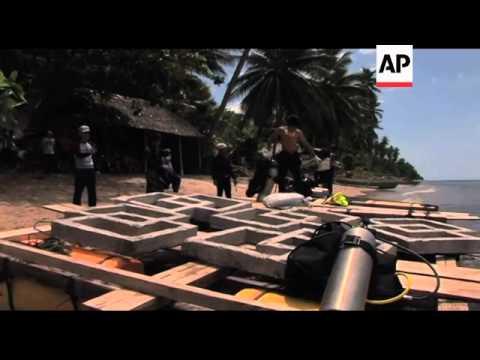 Fishermen build concrete reefs to replace dead coral