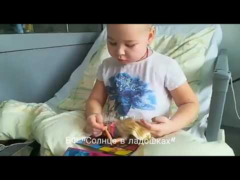 София, 8 лет. Рак крови. Нужна ваша помощь !